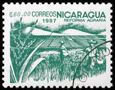 Postage stamp Nicaragua 1987 Rice Paddy, Agrarian Reform — Stock Photo
