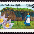 Stock Photo: Postage stamp US1989 Pioneer Womand Sod House