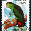 Postage stamp Brazil 1980 Brown-backed Parrotlet, bird — Stock Photo