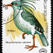 Postage stamp Nicaragu1990 Kagu, Endemic Bird — Stock Photo #33008849
