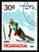Postage stamp Nicaragua 1987 Slalom Skiing, Olympic Games, Calga — Stock Photo