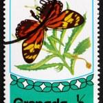 Постер, плакат: Postage stamp Grenada 1975 Tropical Milkweed Butterfly