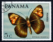 Postage stamp Panama 1968 Skipper Butterfly — Stock Photo