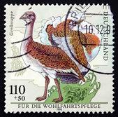 Postage stamp Germany 1998 Great Bustard, Otis Tarda, Bird — Stock Photo
