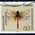 Postage stamp Germany 1991 Ruddy Darter, Dragonfly — Stock Photo