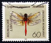 Postage stamp Germany 1991 Ruddy Darter, Dragonfly — Stock Photo