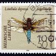 Postage stamp Germany 1991 Broad-bodied Darter, Dragonfly — Stock Photo #35278011