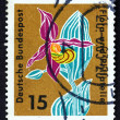 Postage stamp Germany 1963 Lady's Slipper, Orchid — Stock Photo