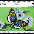 Postage stamp Cuba 1984 Cydno Longwing, Butterfly — Stock Photo