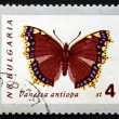 Postage stamp Bulgaria 1962 Mourning Cloak, Butterfly — Stock Photo