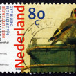 Postage stamp Netherlands 1999 Goldfinch, by Carel Fabritius — Stock Photo