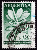 Postage stamp Argentina 1956 Mate Herb and Gourd — Stock Photo