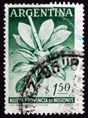Postage stamp Argentina 1956 Mate Herb and Gourd — Φωτογραφία Αρχείου