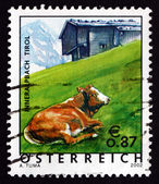 Postage stamp Austria 2002 Cow in Pasture, Tyrol Province — Stock Photo