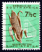 Postage stamp South Africa 1961 Ear of Corn, Maize — Foto Stock