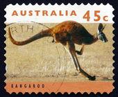 Postage stamp Australia 1994 Kangaroo, Marsupial Mammal — Stock Photo