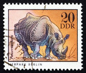 Postage stamp GDR 1975 Rhinoceros, Animal — Stock Photo