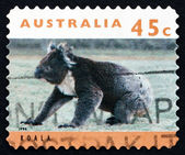 Postage stamp Australia 1994 Koala, Marsupial Mammal — Stock Photo