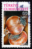 Postage stamp Turkey 2005 Common Onion, Vegetable — Stock Photo