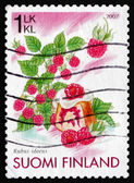 Postage stamp Finland 2007 Raspberries and Raspberry cake — Stock Photo