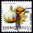Postage stamp Sweden 2009 Garlic, Vegetable — Stock Photo