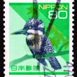 Postage stamp Japan 1992 Pied Kingfisher, Bird — Stock Photo