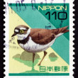 Stock Photo: Postage stamp Jap1992 Plover, Wading Bird