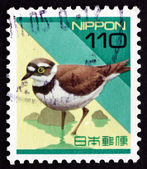 Postage stamp Japan 1992 Plover, Wading Bird — Stock Photo