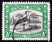 Postage stamp South West Africa 1931 Kori Bustard, Bird — Stock Photo