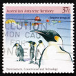 Postage stamp Australia 1988 Emperor Penguins — Stock Photo
