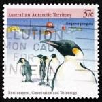 Postage stamp Australia 1988 Emperor Penguins — Stock Photo