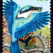 Postage stamp Australia 1999 Sacred Kingfisher, Bird — Stock Photo