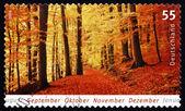 Postage stamp Germany 2006 Autumn, Season — Stock Photo