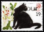 Postage stamp GB 1995 Black cats — Stock Photo