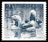 Postage stamp Sweden 1986 Black-throated Loon, Bird — Stock Photo