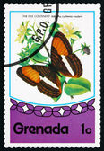 Postage stamp Grenada 1975 Smooth-banded Sister, Butterfly — Stock Photo