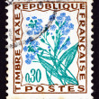 Stock Photo: Postage stamp France 1964 Forget-me-not, Flower