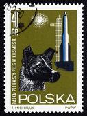 Francobollo Polonia 1964 cane laika, il viaggiatore dello spazio — Foto Stock