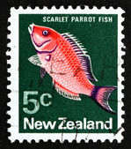 Postage stamp New Zealand 1970 Scarlet Parrotfish — Stock Photo
