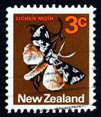Postage stamp New Zealand 1970 Lichen Moth — Stock Photo
