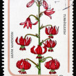Postage stamp Hungary 1985 Martagon Lily, Plant — Stock Photo