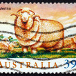 Postage stamp Australi1989 Merino Sheep — Stock Photo #41047545