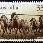Postage stamp Australia 1986 Brumbies, Wild Horses — Stock Photo #41047835
