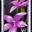 Stock Photo: Postage stamp Australi1986 Notched Elythranthera, Orchid