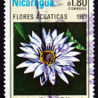 Postage stamp Nicaragua 1981 Nymphaea Director George T. Moore — Stock Photo
