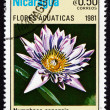 Postage stamp Nicaragua 1981 Cape Blue Water Lily, Aquatic Flowe — Stock Photo