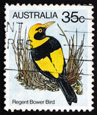 Postage stamp Australia 1980 Regent Bower Bird, Bird — Stock Photo