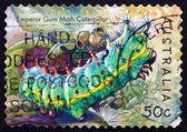 Postage stamp Australia 2003 Emperor Gum Moth Caterpillar — Stock Photo
