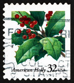Postage stamp USA 1997 Holly, Christmas — Stock Photo