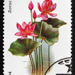 Stock Photo: Postage stamp Russi1984 Lotus, Aquatic Plant